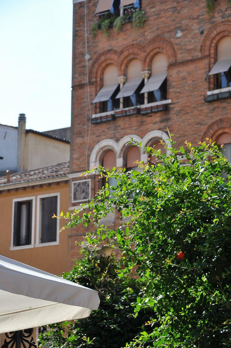 Venice 2nd day 2011 042